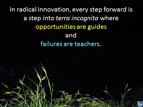 Radical Innovation steps into terra incognita